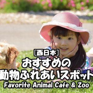 西日本/関西にあるおすすめの動物カフェやふれあいスポットをまとめてみた!