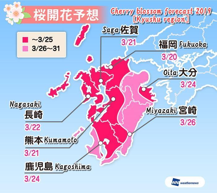 sakura-kaikayosou-2019-kyushu