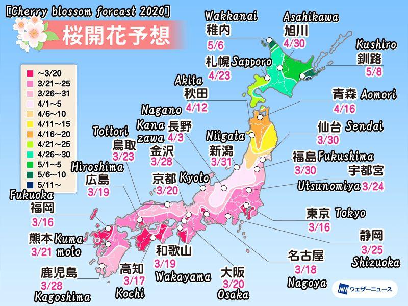 2020年度の桜開花予想(Cherry blossom forcast 2020)
