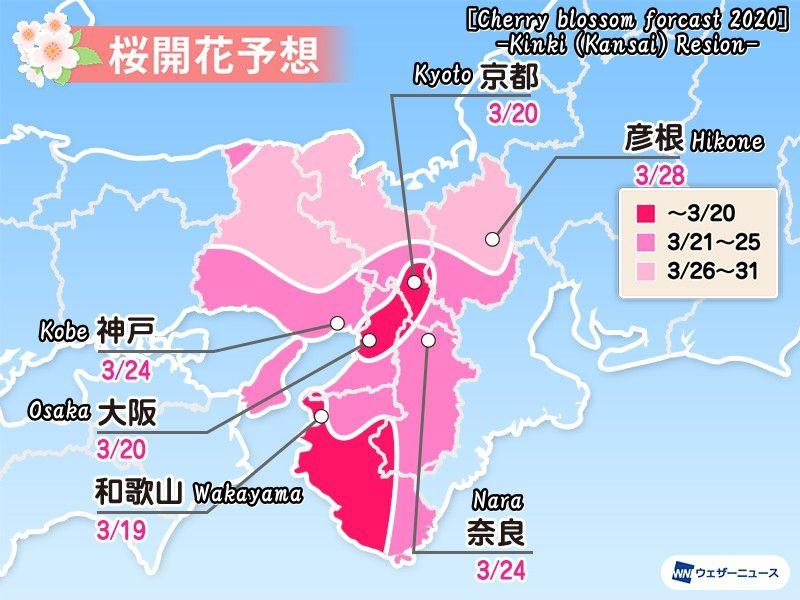 2020年度の近畿/関西地方の桜開花予想(Cherry blossom forcast 2020 -Kinki, Kansai Resion-)