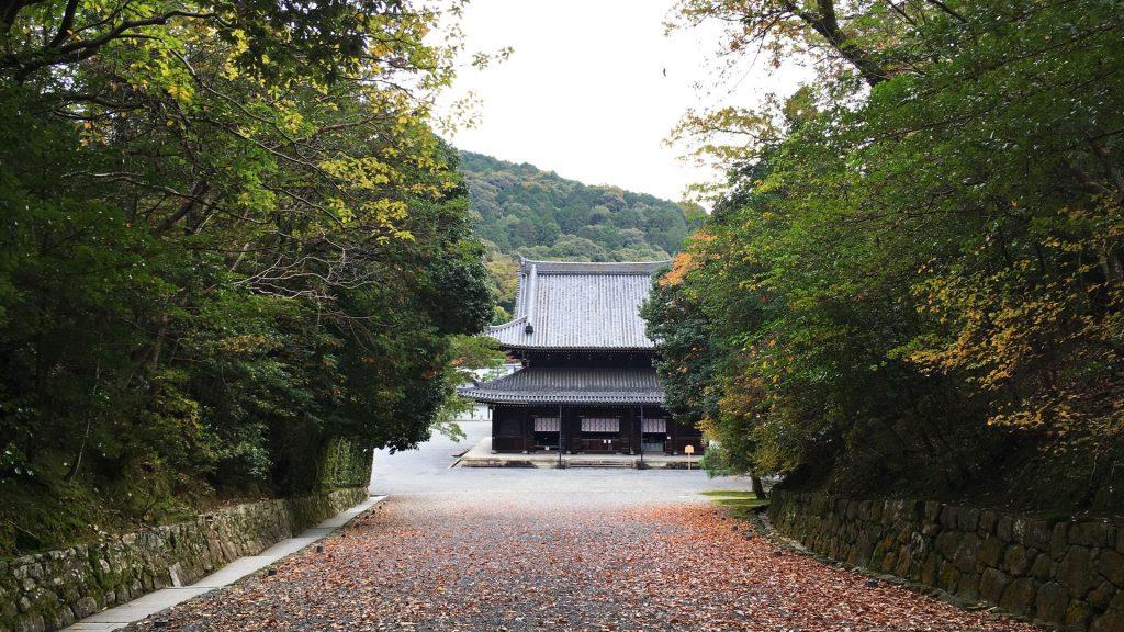 泉涌寺-大門から眺める仏殿