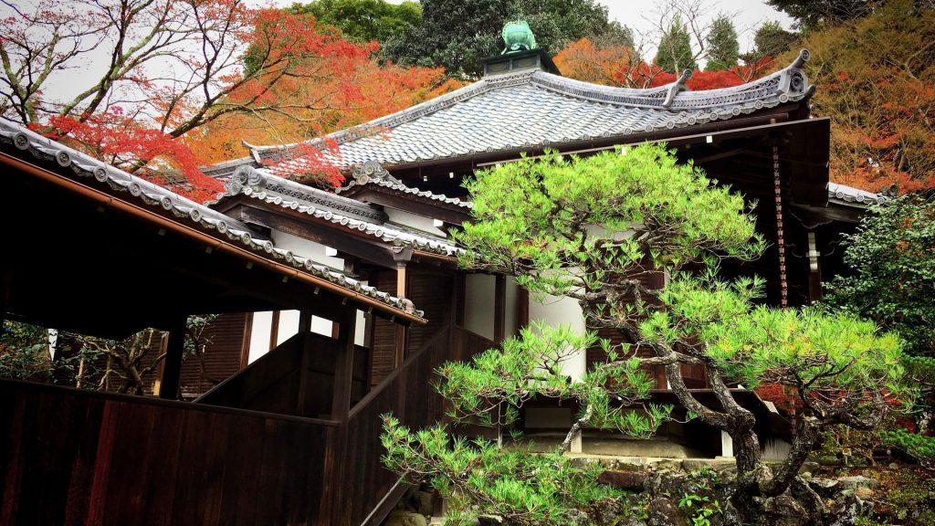 霊鑑寺-本堂