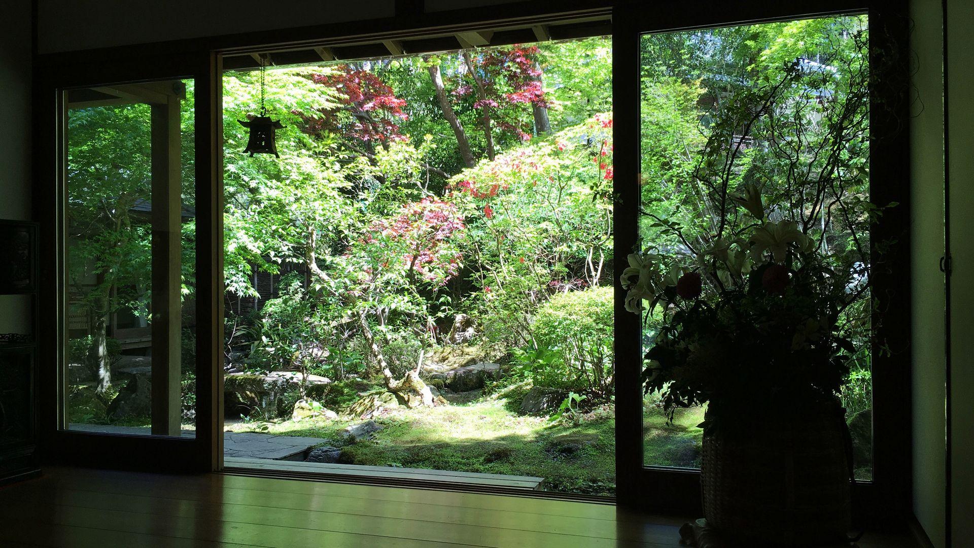 宝泉院の客室から望む庭園