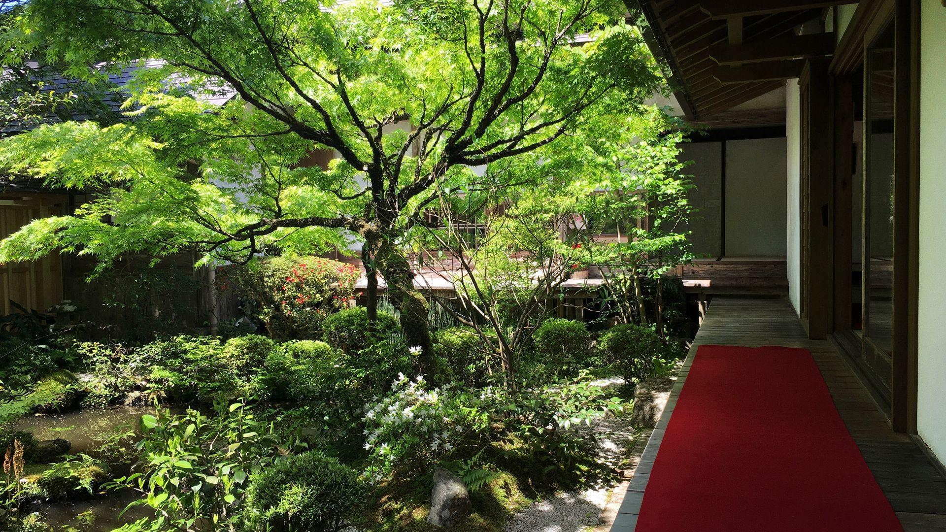 宝泉院の鶴亀庭園01