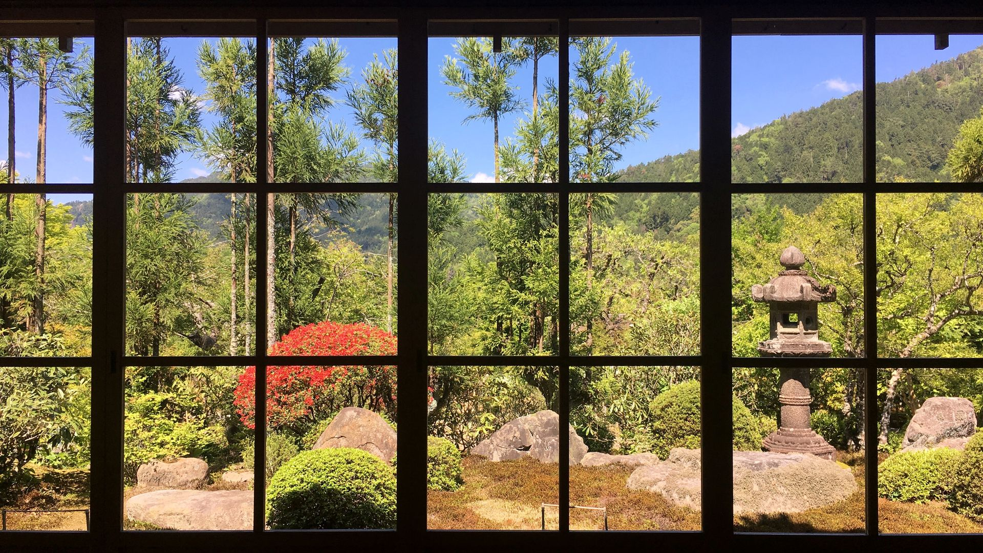 実光院-客殿内部からの眺め01