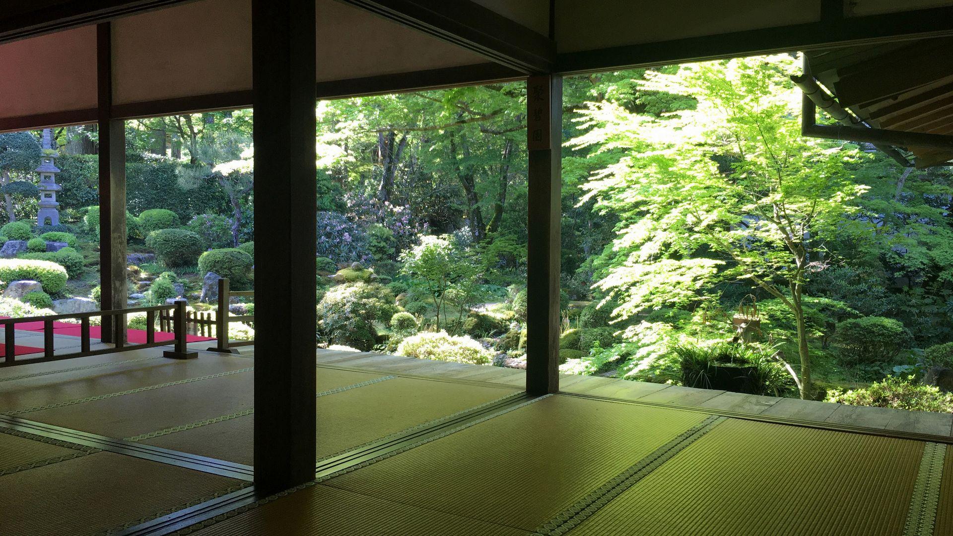 三千院-客殿から庭園を眺める