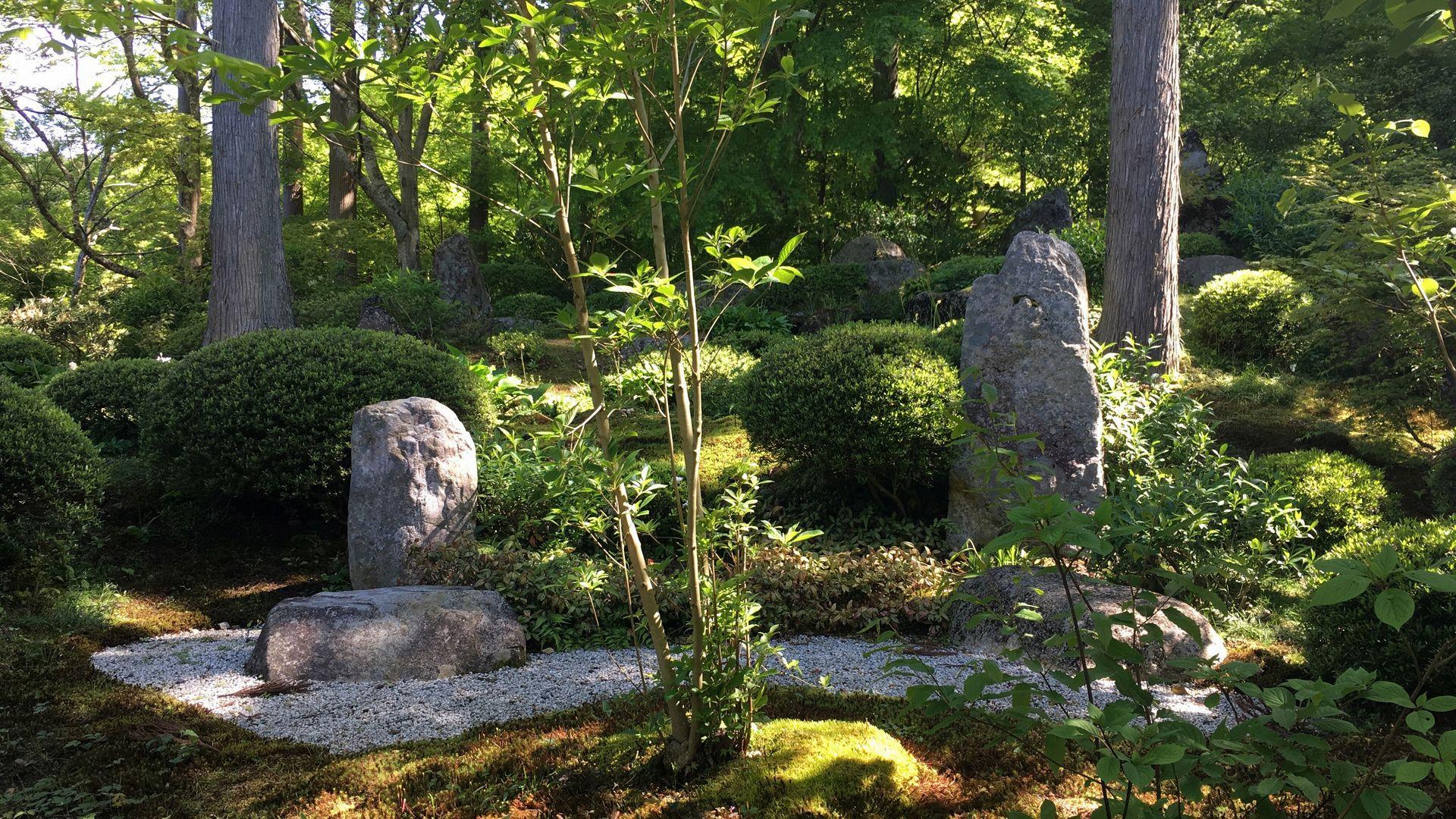 三千院-慈眼の庭01