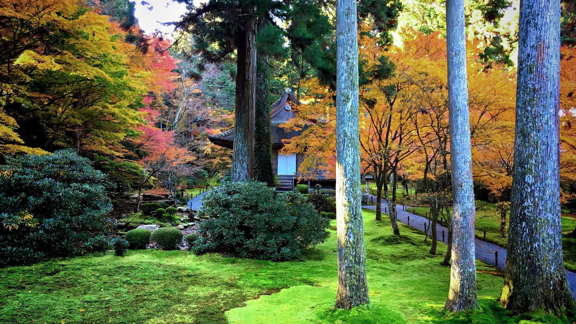 三千院-有清園の紅葉