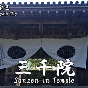 Highlights and how to get to Toji-in Temple.
