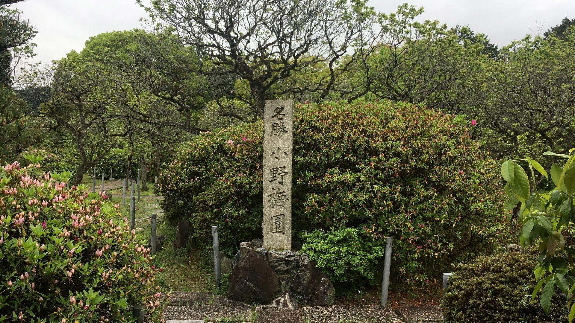随心院の小野梅園