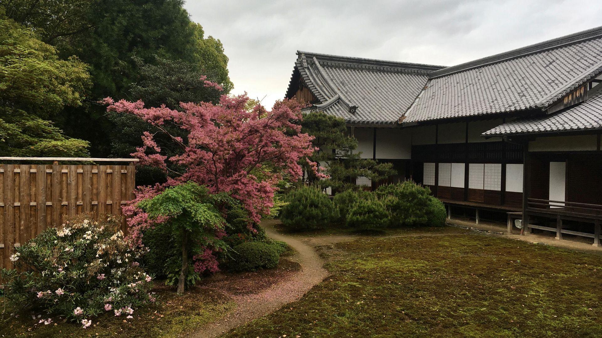 随心院の庭園