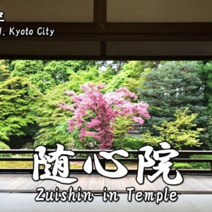 Directions and highlights of Zuishin-in Temple.