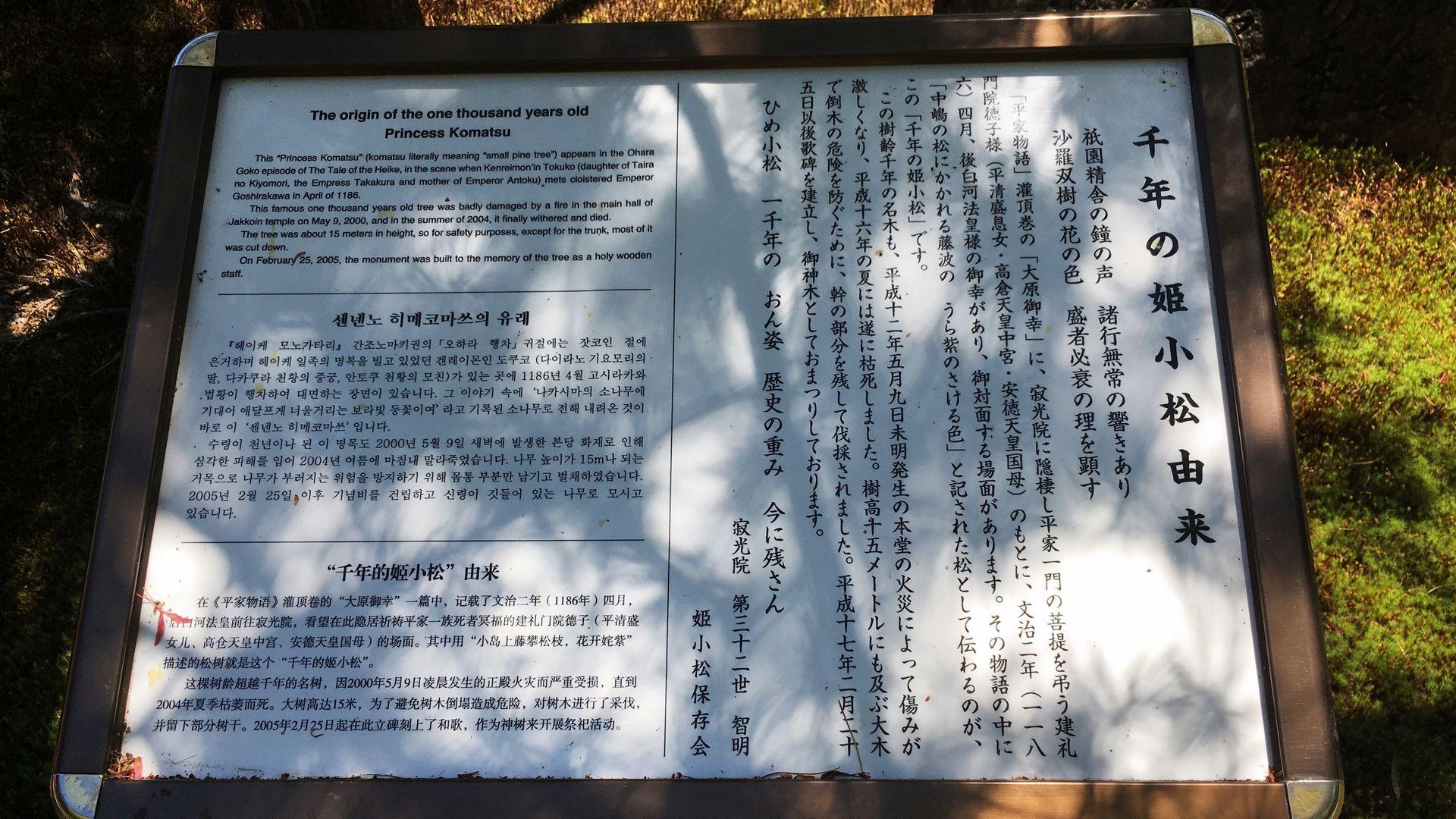 寂光院-千年姫子松の紹介文