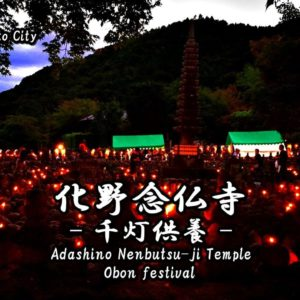 Information of illumination events in Okayama Castle and Koraku-en Garden.