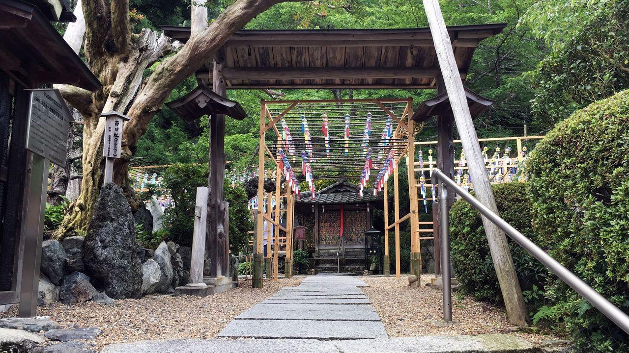 正寿院の山門