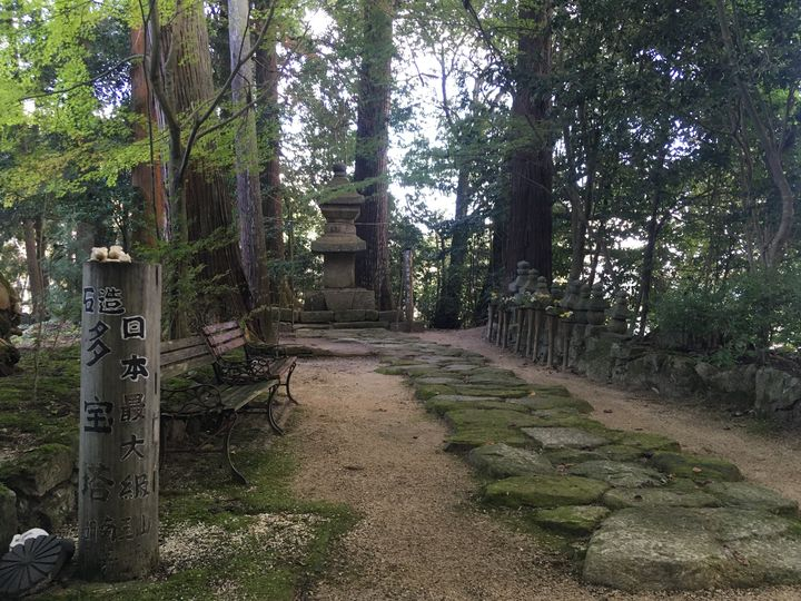 長寿寺の石造多宝塔