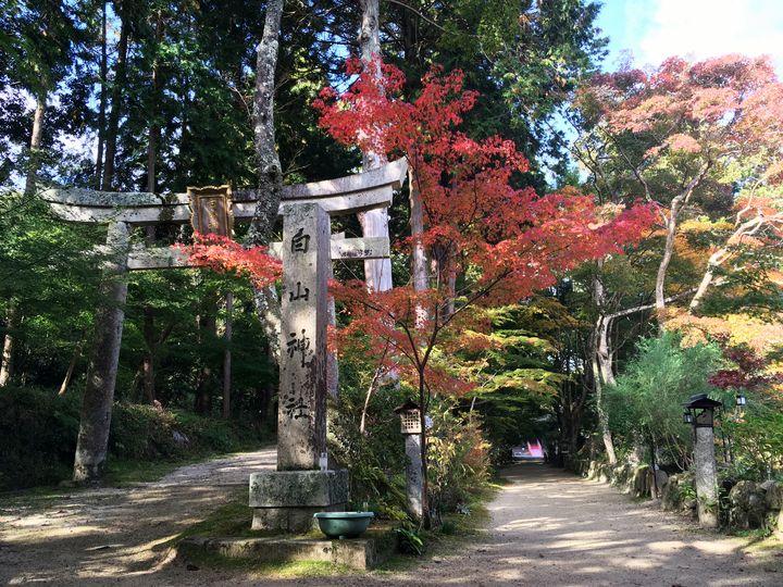 長寿寺の参道