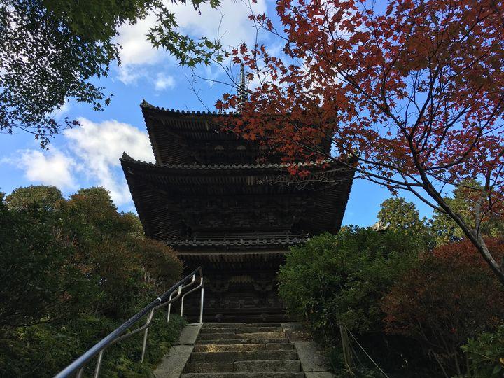 常楽寺の三重塔