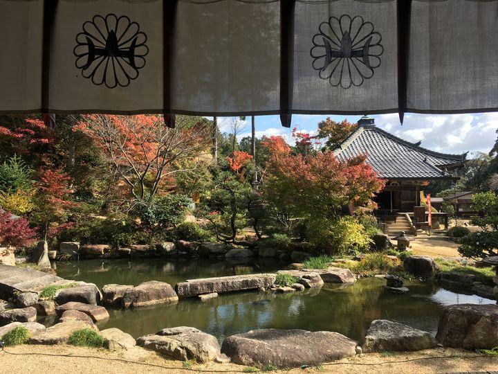 善水寺の本堂から見る庭園(Garden of Zensui-ji)