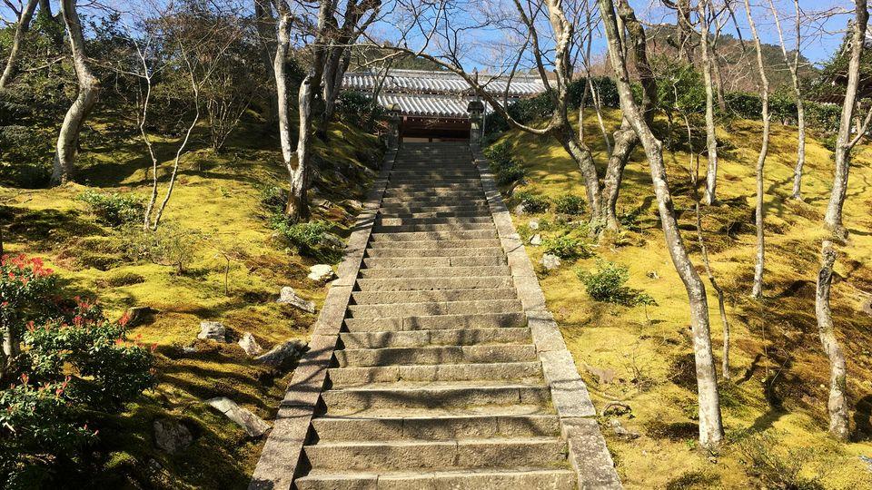 常寂光寺の境内(Precincts of Jojakko-ji Temple)
