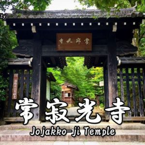 Highlights and how to get to Horyu-ji Temple.