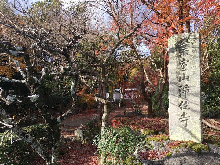 浄住寺の石碑(Stone monument of Joju-ji Temple)