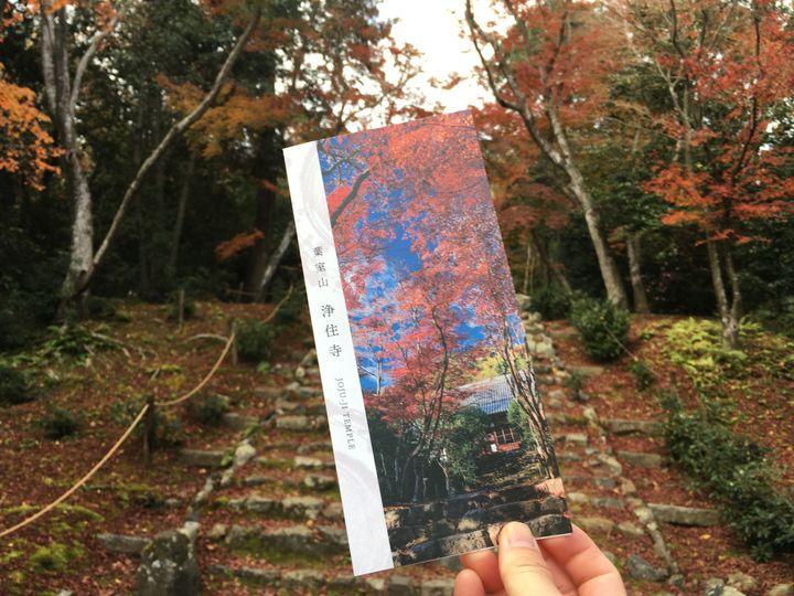 浄住寺のパンフレット(Brochure of Joju-ji Temple)