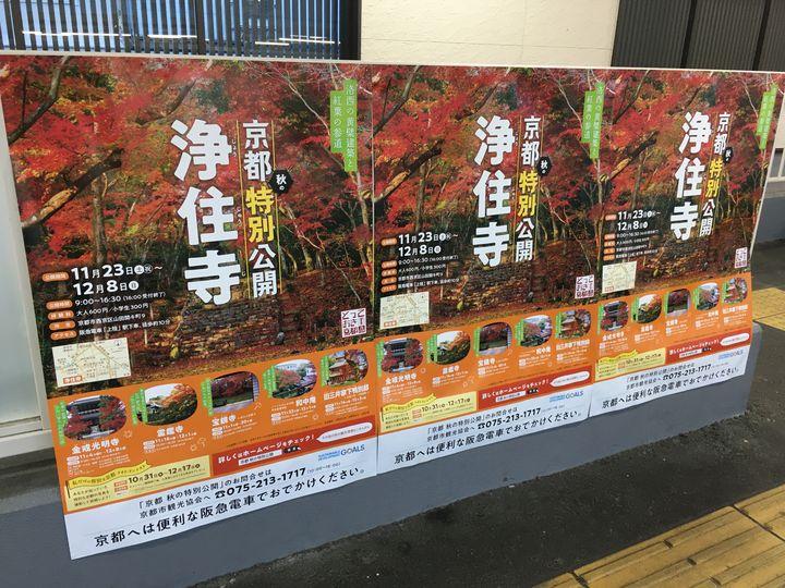 浄住寺特別拝観のポスター