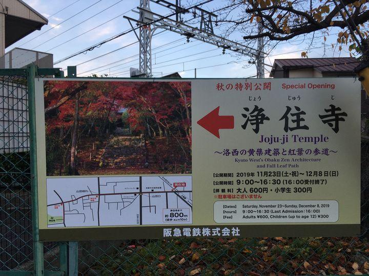 浄住寺の特別拝観の看板
