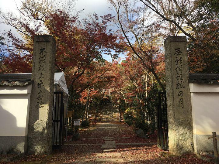 浄住寺の山門(San-mon gate of Joju-ji Temple)