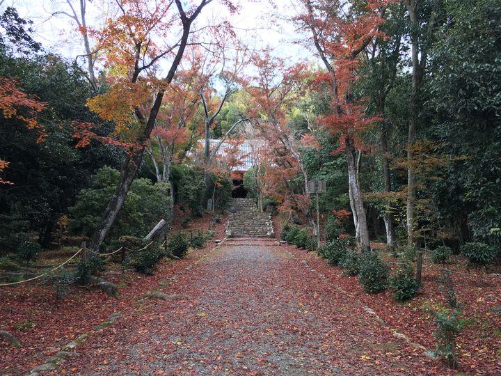 浄住寺の参道(Approach to the Joju-ji Temple)
