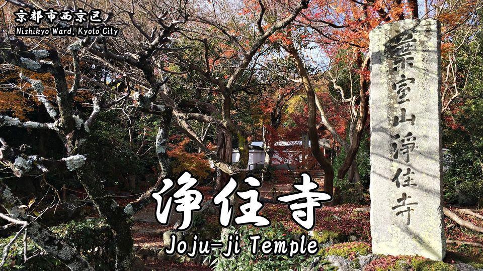 浄住寺の記事タイトル画像(Photo of Joju-ji Temple)