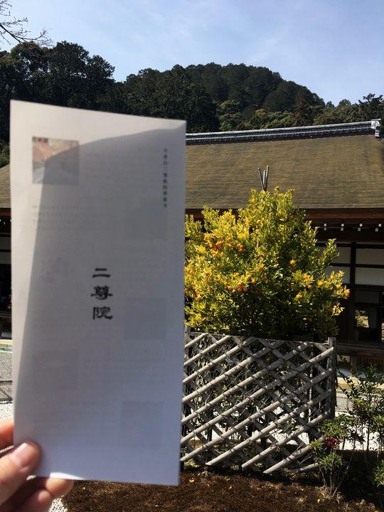 二尊院のパンフレット(Brochure of Nison-in Temple)
