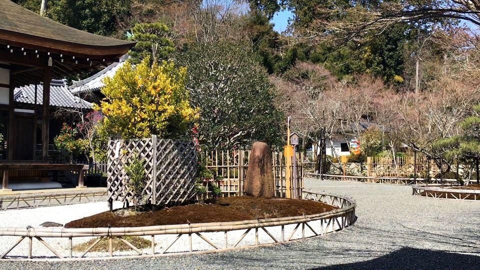 二尊院の竜神遊行の庭(Ryujin-yugyo-no-niwa garden of Nison-in Temple)