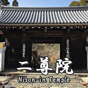 Directions and highlights of Kontai-ji Temple.