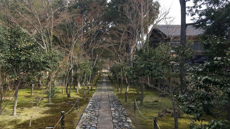 鹿王院の参道(Approach to the Rokuo-in Temple)