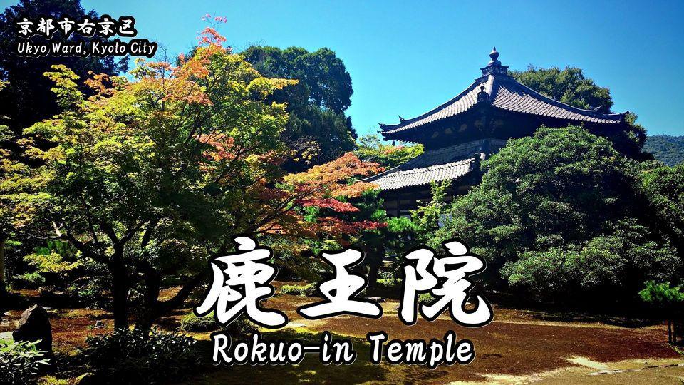 鹿王院の記事タイトル画像(Rokuo-in Temple)