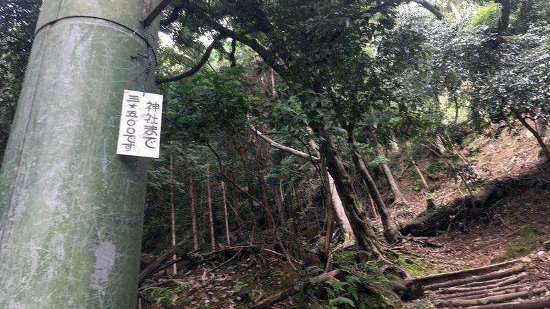 愛宕神社の表参道(Omotesando of Atago-jinja Shrine)