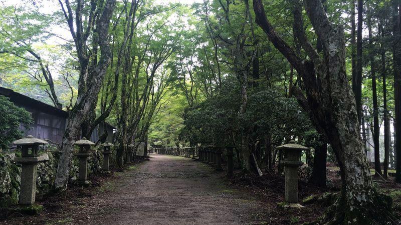 愛宕神社の境内(Precincts of Atago-jinja Shrine)