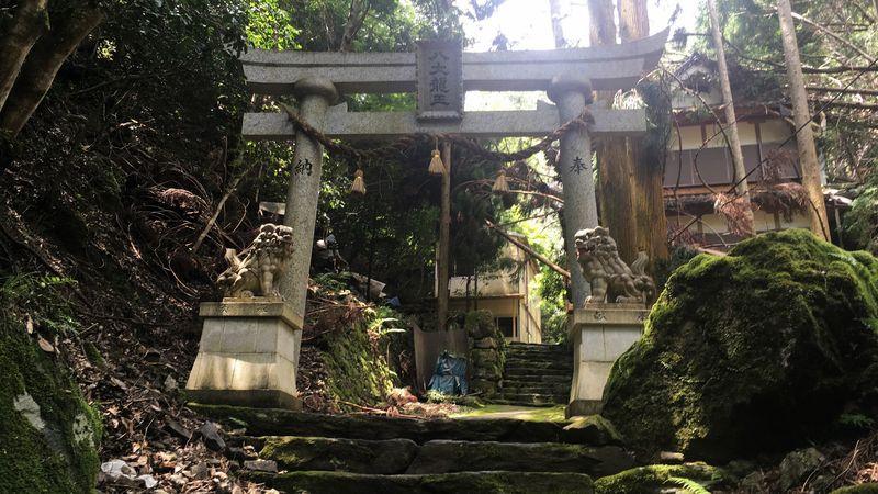 八大龍王の鳥居(Torii Gate of Hachidai Ryuo)